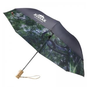 Paraguas Forest